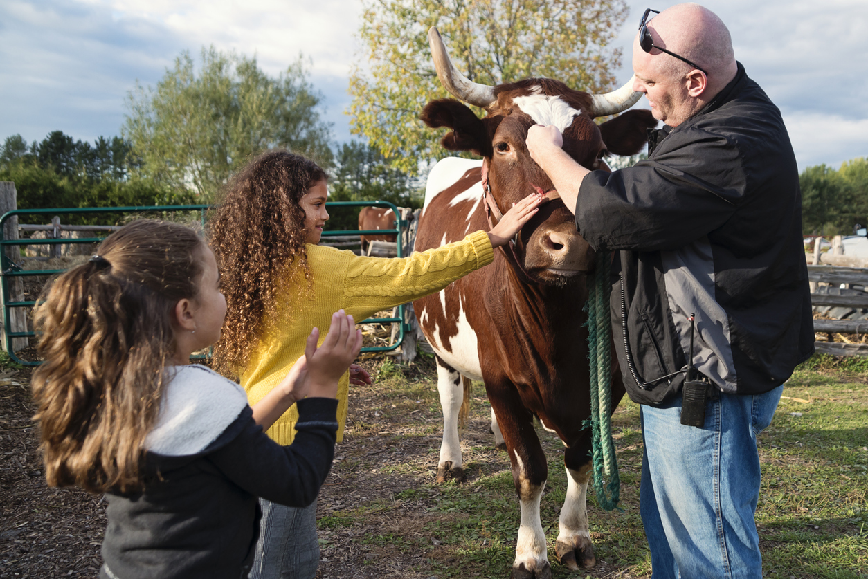 Little girls petting a bull on a farm.